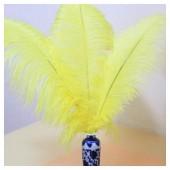 1 шт. Желтый цвет. Перо страуса 40-45 см