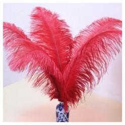 1 шт. Красный цвет. Перо страуса 40-45 см