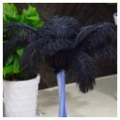 1 шт. Черный цвет.  Перья страуса 45-50 см