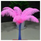 1 шт. Розовый цвет.  Перья страуса 45-50 см