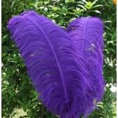 1 шт. Фиолетовый цвет. Перья птиц страуса 50-55 см.