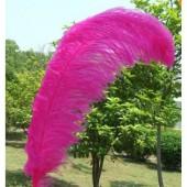 1 шт. Фуксия цвет. Перья птиц страуса 50-55 см
