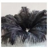 1 шт. Черный цвет. Перья птиц страуса 50-55 см