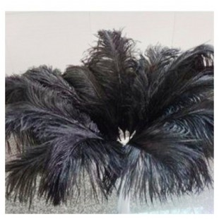 Перья птиц страуса 50-55 см