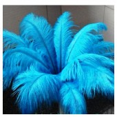1 шт. Голубой цвет. Перья птиц страуса 50-55 см