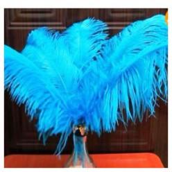 1 шт. Голубой цвет. Перья птиц страуса 55-60 см