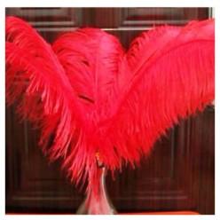 1 шт. Красный цвет. Перья птиц страуса 55-60 см