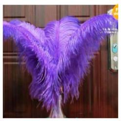 1 шт. Фиолетовый цвет. Перья птиц страуса 55-60 см