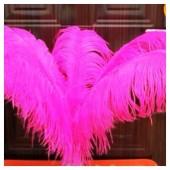 1 шт. Фуксия цвет. Перья птиц страуса 55-60 см