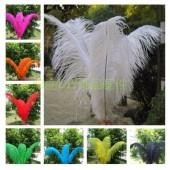 1 шт. Белый цвет. Перья птиц страуса 60-65 см