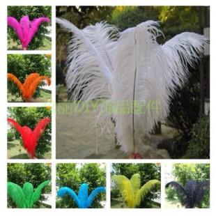 Перья птиц страуса 60-65 см