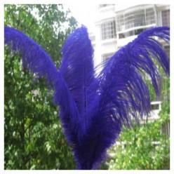1 шт. Синий цвет. Перья птиц страуса 60-65 см