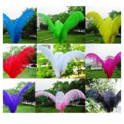 1 шт. Фуксия цвет. Перья птиц страуса 65-70 см