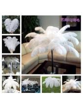 1 шт. Белый цвет. Перья птиц страуса  65-70 см