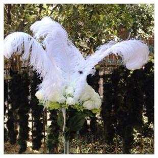 Перья птиц страуса 65-70 см.