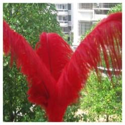 1 шт. Красный цвет. Перья птиц страуса 65-70 см