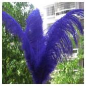 1 шт. Синий цвет. Перья птиц страуса 65-70 см