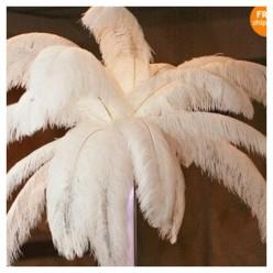 1 шт. Белый цвет. Перья птиц страуса 70-75 см