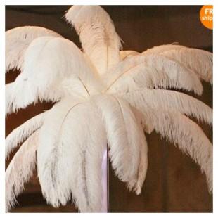 Перья птиц страуса 70-75 см