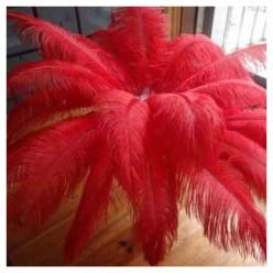 1 шт. Красный цвет. Перья птиц страуса 70-75 см