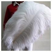 1 шт. Белый цвет.  Перья птиц страуса 75-80 см.  Экстра класс