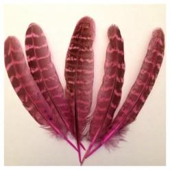 20 шт. Розовый цвет. Перья фазана 13-15 см