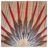 775. 1 шт. Перья фазана 15-20 см.