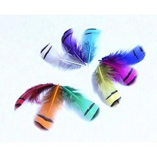 20 шт. Микс цвет. Перья фазана 5-8 см. Цветное перо