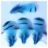10 шт. Голубой цвет. Перья фазана 3-6 см. Цветное перо