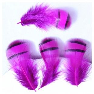 20 шт. Фуксия цвет. Перья фазана 5-8 см. Цветное перо