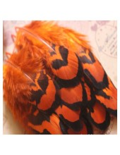 10 шт. Оранжевый цвет. Перья фазана 4-9 см.