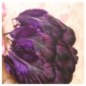 20 шт. Фиолетовый цвет. Перья фазана 6-9 см.