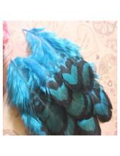 20 шт. Голубой цвет. Перья фазана 6-9 см.