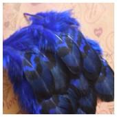 10 шт. Синий цвет. Перья фазана 4-9 см.