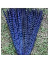1 шт. Синий цвет. Перья фазана 50-55 см. Цветное