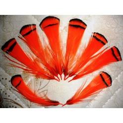 20 шт. Оранжевый цвет. Перо фазана 6 см. С полосками