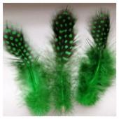 20 шт. Зеленый цвет. Цесарка 6-12 см. Горошек