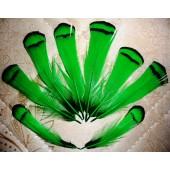 20 шт. Зеленый цвет. Перо фазана 6 см. С полосками