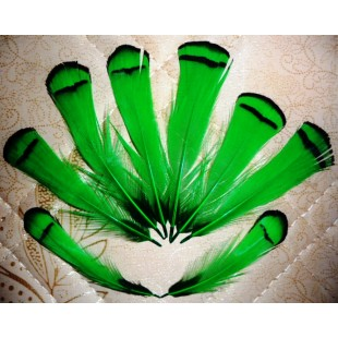 10 шт. Зеленый цвет. Перо фазана 6 см. С полосками