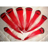 10 шт. Красный цвет. Перо фазана 6 см. С полосками