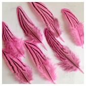 20 шт. Розовый цвет. Перо фазана 7-10 см. Коктейль