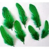 10 шт. Зеленый цвет. Перо фазана 7-10 см. Коктейль