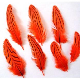 20 шт. Оранжевый цвет. Перо фазана 7-10 см. Коктейль