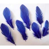 20 шт. Синий цвет. Перо фазана 7-10 см. Коктейль