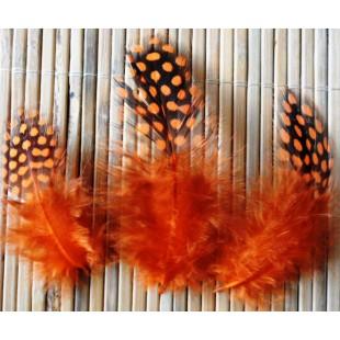 20 шт. Оранжевый цвет. Цесарка 4-5 см. Горошек