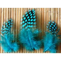 20 шт. Голубой цвет. Цесарка 4-5 см. Горошек