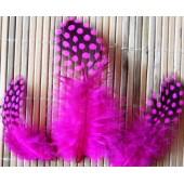 20 шт. Фуксия цвет. Цесарка  4-5 см. Горошек