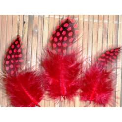 20 шт. Красный цвет. Цесарка 4-5 см. Горошек