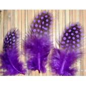 20 шт. Фиолетовый цвет. Цесарки  4-5  см. Горошек