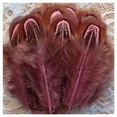 20 шт. Розовый цвет. Фазан цветное перо 4-7 см